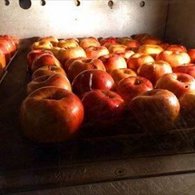 パン屋のオーブンでリンゴを焼きます
